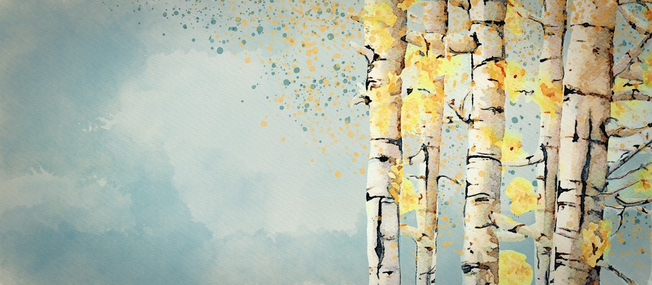 Reducing AWS S3 Storage Costs with Bubble Trees cover image